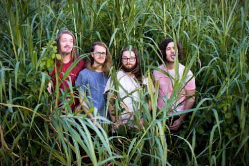 Grasss FULL